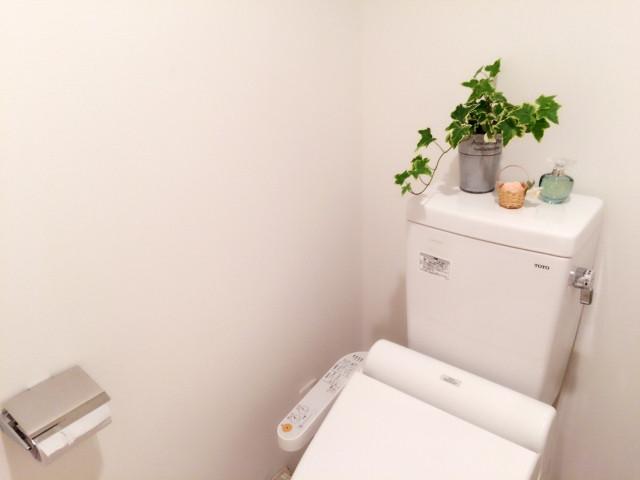 観賞用の植物が置かれたトイレ